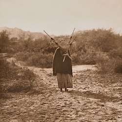 The Burden Bearer - Pima (1907)