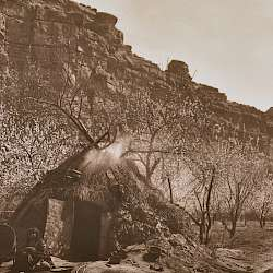 Home of the Havasupai (1903)