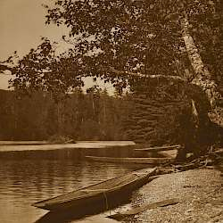 On Quinault River (1912)
